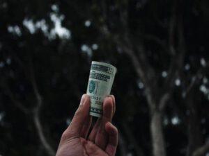 make money by website