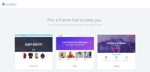 Bluehost select theme