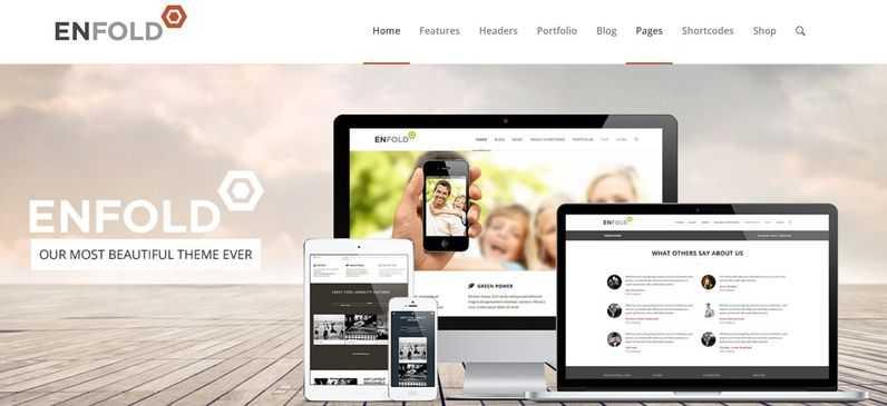 enfold-screenshot